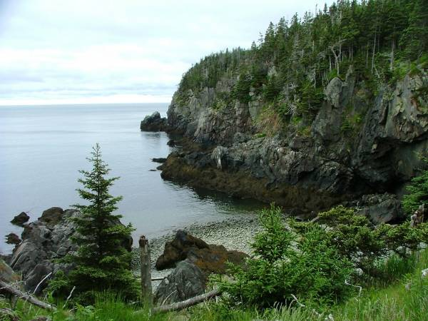 Gulliver's Hole - West Quoddy Head