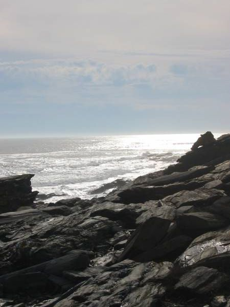 Rocky Coast at Two Lights Challenge