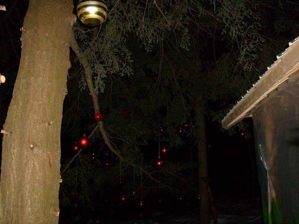 209 Christmas Cache