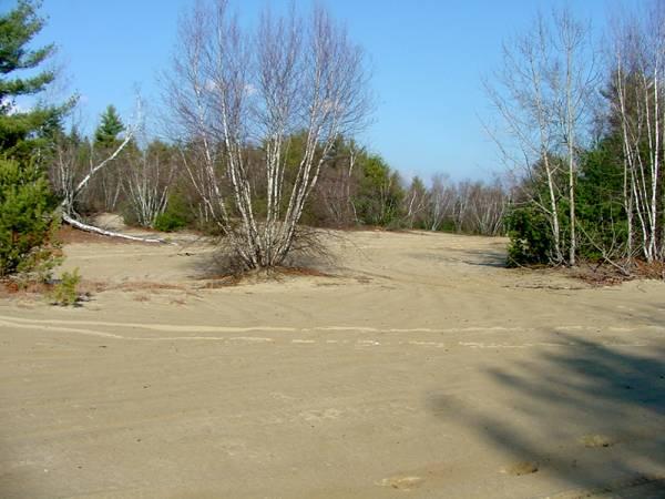 Sandzone Cache
