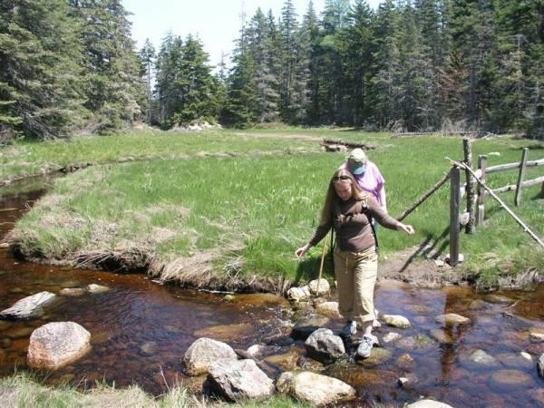 Holt Pond Preserve cache