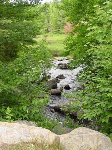 Near the Dam