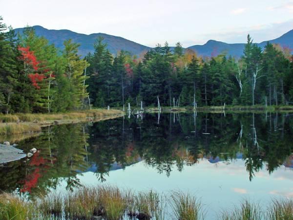 Mascot Pond  cache