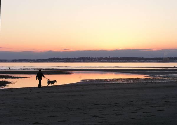 Tidal Cache Sunset