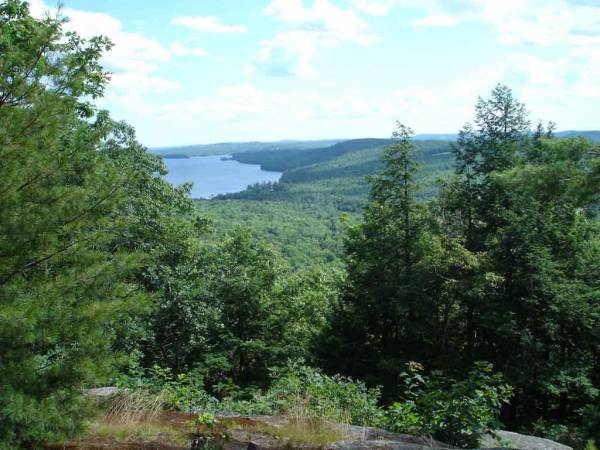 View from Mt. Phillip (N1SDR's)