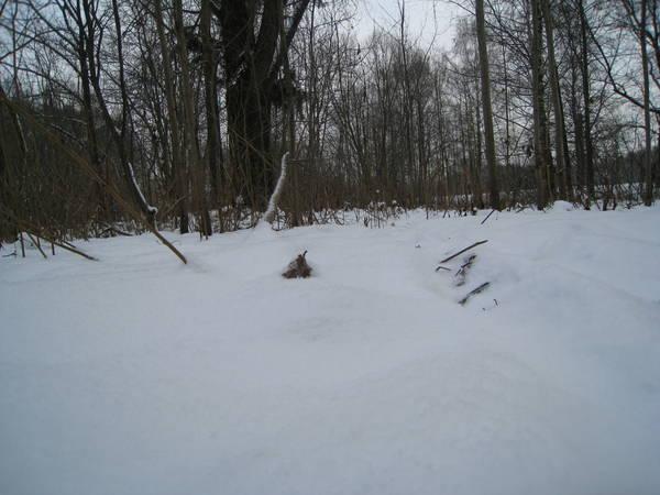 Snow_bound