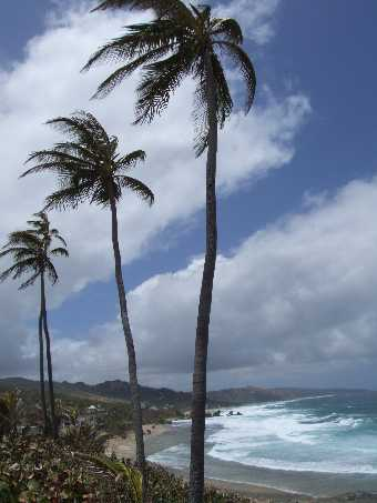 bathsheba1