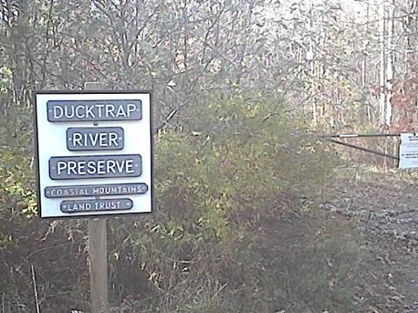 Ducktrap River Preserve